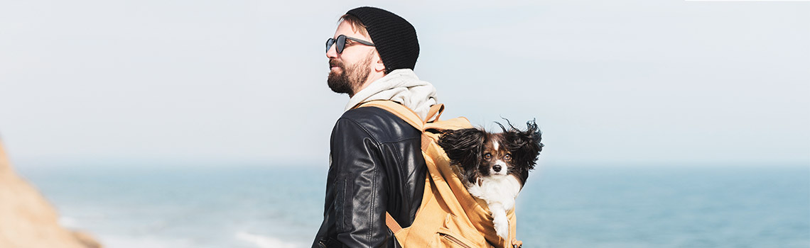 How much will traveling with my pet cost?
